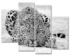 B/W Leopard With Different Eye Colors Canvas Prints Set Of 4 Wall Clock FRAMED
