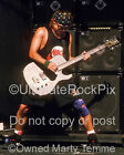 JEFF AMENT PHOTO PEARL JAM Concert Photo by Marty Temme 1A Hamer Bass