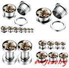 Pair(2) 4-14mm Stainless Steel Twins Skull Ear Tunnels Screw Plugs Expander
