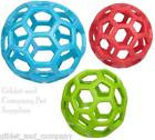 MEDIUM HOL-EE ROLLER BALL - Rubber Lattice Fetch Bouncy Treat Dog Ball Toy