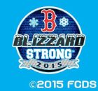 Boston Blizzard Strong 2015 Snow Storm I Survived Circle Limited Edition Decal