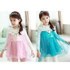 2015 Baby Girls Kids Princess Party Lace Hollow Out Fancy Gown Dress Tutu 2-7Y