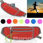 Sports Running Belt Bag Travel Handy Hiking Fanny Pack Waist Belt Zip Pouch New