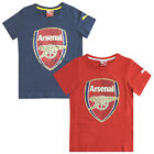 Puma AFC Arsenal FC Fan Children Kids Boys Cotton T-shirts (746480 01A-02B U24)