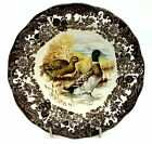 Royal Worcester Palissy GAME SERIES Rimmed Cereal/Dessert Bowl - Mallard