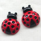 Red Ladybug Ladybird Resin Flatback Flat Backs Button DIY Craft Appliques B0471