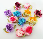 Cute Flower Cat Small Dog Hair bows w /rubber bands Grooming Hair Accessories