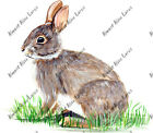 Rabbit Bunny Hare Auto Boat RV Camper Truck Car Window Body Vinyl Decal Sticker