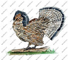 Ruffed Grouse Pennsylvania PA State Bird Game Hunting Camp Vinyl Decal Sticker