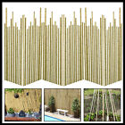 6ft Extra Strong Garden Canes Professional(10-12mm)Bamboo Fencing Plant Support