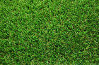 New Luxury Lawn Off Cuts Various Sizes 2m width rolls