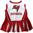 Tampa Bay Buccaneers dog pet Cheerleader Dress NFL (all sizes) $18.59 USD on eBay