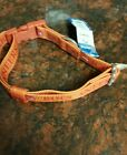 VINTAGE ,TAMPA BAY BUCCANEERS THROWBACK LOGO & COLORS, DOG COLLAR AND LEASH