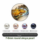 1/5/10/25/100 PCS Individual Wrapped Akoya Oysters with Large Pearls 7-9mm Gift