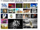 POSTERS ANIMALS - PEACOCK, BEAR,RUNNING HORSES,TIGER,SWAN, CHOOSE IMAGE and SIZE