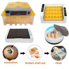 New Digital Automatic Temperature Control 36/56 Eggs Incubator with Egg Candler
