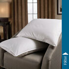 5/95 Down & Feather Blend Pillow By DOWNLITE
