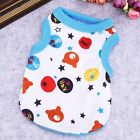 DOG TOP XS TEACUP SMALL PUPPY UK CHIHUAHUA CLOTHES BLUE BEAR TOP 18CM XS