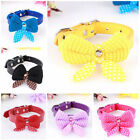 Fashion Cute Pet Cat Dog Adjustable PU Leather Bow tie Collar Necklet Bell