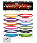 Premium Red Dingo Reflective Safety Dog Collar - Martingale - Pick Size/Color