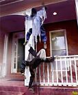 LIFE SIZE CLIMBING ZOMBIE EASY TO HANG INDOOR OUTDOOR HALLOWEEN DECOR
