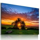 SEA SKY SUNSET TREE OF LIFE Perfect View Canvas Wall Art Picture Large L546 X