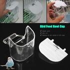 Removable Plastic Clear Bird Feeder Hooded Water Clear Cup Food Bowl + White lid