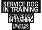 SERVICE DOG IN TRAINING  Patch Reflective Tag for Dog Harness Service