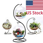 Hanging Ball Glass Planter Container Vase Plant Terrarium w/ Metal Stand,2 Globe