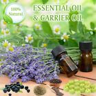peppermint oil for skin - Pure Essential Oils And Carrier Oils For Aromatherapy, Skin & Hair 500ml-1000ml