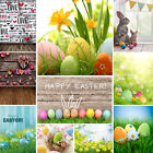 Photography Backdrops For Photographers Colorful Easter Eggs Studio Background