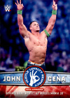 2017 Topps WWE Then Now Forever Asst Cards (A2407) - You Pick - 10+ FREE SHIP