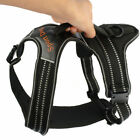 Sports Large Pet Harness Padded Big Dog Walking Vest Safety Control with Handle