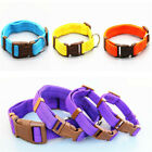 Adjustable Solid Nylon Dog Cat Pet Leash Collar Harnesses For Puppy Accessories