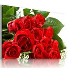 FLOWERS RED ROSES NATURE Modern Canvas Wall Art Picture Large L475 UNFRAMED