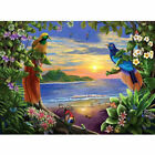 Couple Birds Seaside 16x20'' Paint By Number Kit DIY Acrylic Painting On Canvas