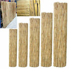 Peeled Reed Fence Garden Privacy Fence Wind Break Screening Wall 4m Roll
