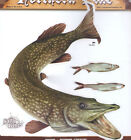Pike Large Size Decal Stickers Right And Left Facing Boats Trucks Fishing Fish
