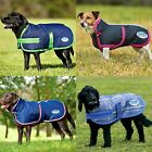 Weatherbeeta Parka 1200d Deluxe Dog Coat (WB323)