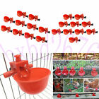 Kyпить 20 Pack Poultry Water Drinking Cups Chicken Hen Plastic Automatic Drinker Quail на еВаy.соm