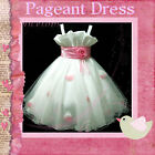 P818 Baby Pink White Christmas Party Flower Girls Dresses SIZE 2-3-4-5-6-7-8-10Y