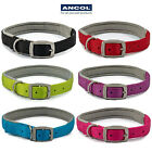 Ancol Neoprene Padded Nylon Dog Collar Black Blue Red Pink Lime Soft & Strong