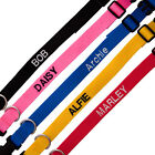 personalised dog collar  medium / large your choice of name or text
