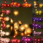 20 or 35 LED Nylon Rose Flower AUS PLUG String Fairy Lights Wedding Party 3M 6M
