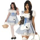 Adult Storybook Character Sweetheart Dorothy Costume Wizard of OZ Party Outfit
