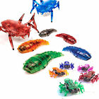 NEW HEXBUG ROBOT ROBOTIC ROBO BATTERY OPERATED KID PET FISH SHARK
