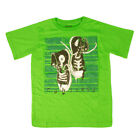 Childrens Converse Shoes Classic Green Graphic Crew Neck T Shirt