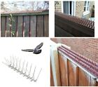 Fence Wall Window Ledge Spikes Anti Climb Pigeon Birds Cat Repellent Spikes