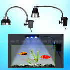 Aquarium Fish Tank Lighting LED Clamp Clip Lamp White Blue Color Light 3W/5W New