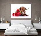 BEAUTIFUL RED ROSE RIBBON FLOWERS & PUPPY DOG - LARGE CANVAS WALL ART NEW PRINT